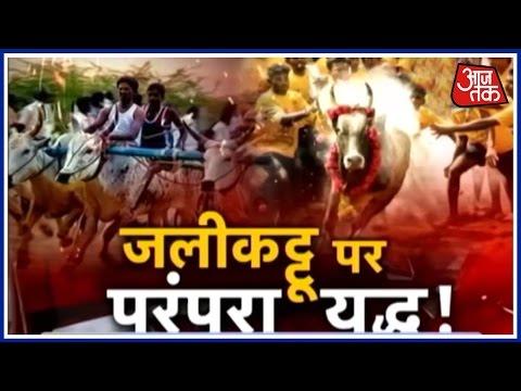 Halla Bol: Jallikattu protest turns violent, Even As Bill Passed