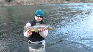 Fly Fishing for Monster Montana Brown Trout in November