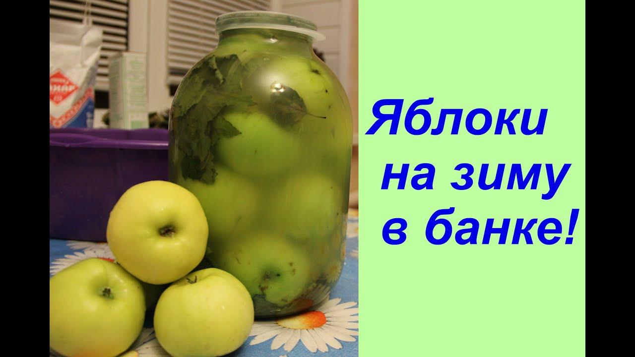можно ли квасить красные яблоки