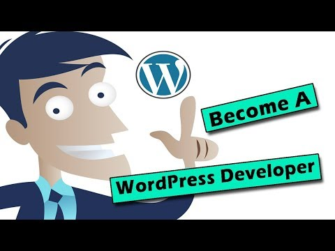 Freelance Wordpress Developer (How To Get Started)