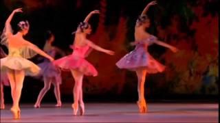 Фрагмент из балета «Спящая красавица». П.И. Чайковский.