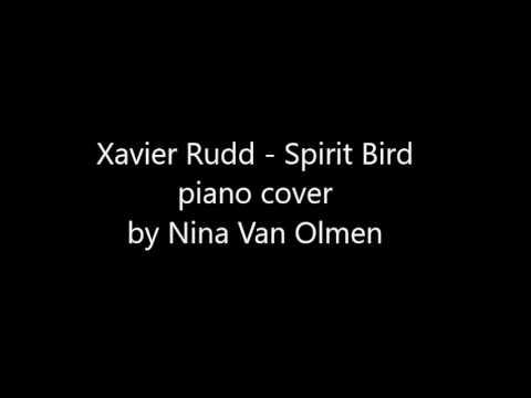 Xavier Rudd -  Spirit Bird (piano cover by Nina Van Olmen)