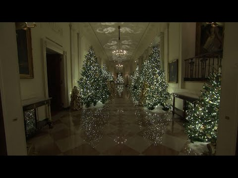 Tanner and Drew - White House Unveils 2019 Christmas Decorations