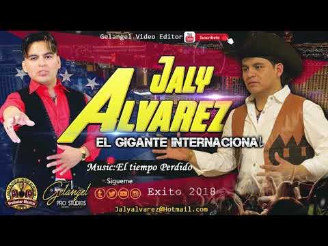 JALY ALVAREZ| El tiempo Perdido | AUDIO (((2018))