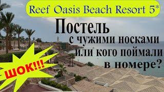 Египет 2021 Reef Oasis Beach Resort 5 Мы в шоке