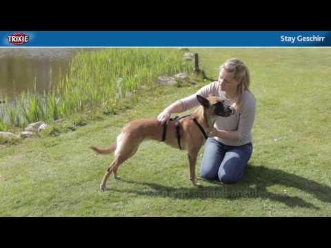 Das Stay-Geschirr für schreckhafte Hunde - TRIXIE Heimtierbedarf