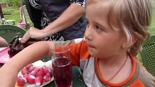 Пикник во дворе/Всей семьей/У костра/Настоящая жизнь в деревне