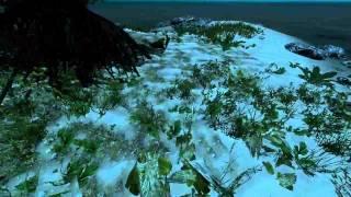ПОДВОДНЫЙ НЫРЯЛЬЩИК   Приключенческое Выживание в Stranded Deep #7