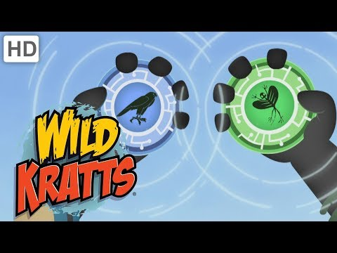 Wild Kratts - Theme Song (10 Minutes)