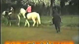 Ghost while riding a horse at UK farm in Kent in 80s