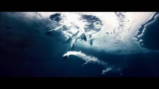 Oceans - Swimming Penguins