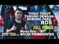 Ngecun Full Power Mb Bocah Pemberontak Wani Tarung Lawan Burung Bos  Mp3 - Mp4 Download