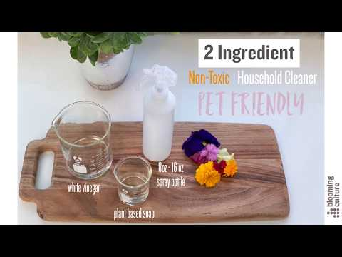 homemade-all-purpose-cleaner--non-toxic-and-pet-safe