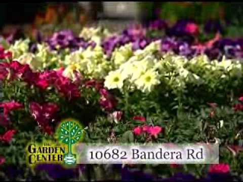 The Garden Center Nursery In San Antonio, TX