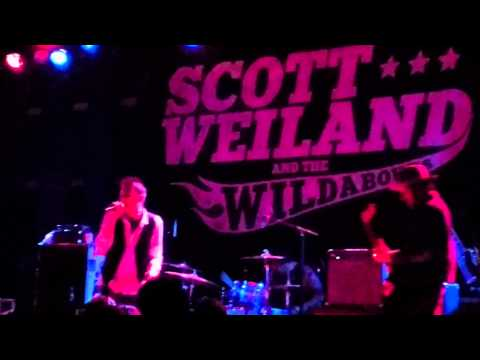 Scott Weiland And The Wildabouts- Unglued (Live in Philly 3/12/15) PLUS Joey Castillo drum solo