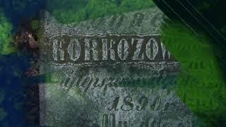Панское кладбище. Кальск. Солигорский район