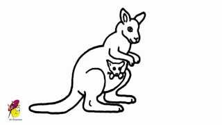 Australian Kangaroo with a Kid - Easy Drawing - How to draw a Kangaroo