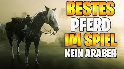 Red Dead Redemption 2: Das BESTE Pferd im Spiel - KEIN ARABER | Alle Seltenen Pferde UMSONST