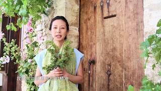 Download lagu 肯園植物學堂|淨化與臣服 [杜松]、[刺檜] 與 [高地杜松]