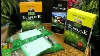 видео трава газонная купить