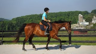 Avoid the 'Double Bounce' in Rising Trot