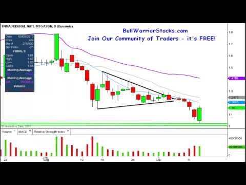 federal-national-mortgage-association-(fnma)-penny-stock-trading-chart_9/13/2013