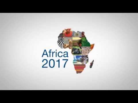 Role of young entrepreneurs in Africa's growing business landscape