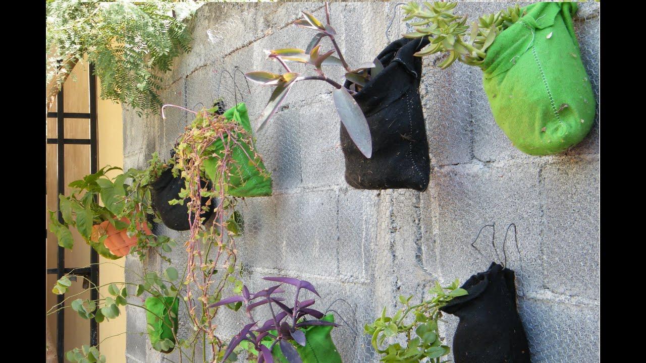 Jardi n vertical plantas de sombra y media sombra youtube for Matas de jardin