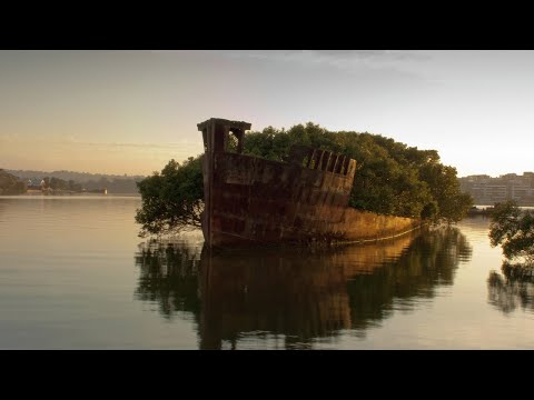 15 Shipwrecks you can visit!