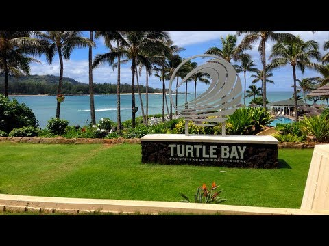 My Forgetting Sarah Marshall Staycation Semi Vlog Vlog (Turtle Bay Resort, Oahu) Beach Cottage