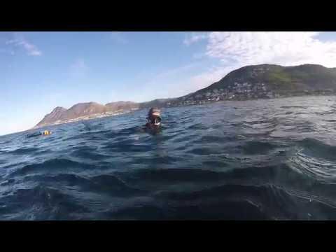 Little Adventure Off Fish Hoek