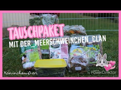 Tauschpaket mit der_meerschweinchen_clan 📦🐹 | Kaninchenstar