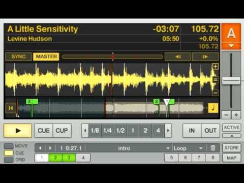 A Little Sensitivity, Levine Hudson mp3