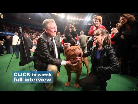 Interviews with the Owners   Victoria Stilwell at Westminster Dog Show