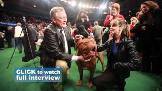 Interviews with the Owners | Victoria Stilwell at Westminster Dog Show
