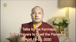 7 Talks in English by Karmapa in Prayers to Quell the Pandemic