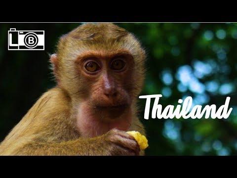 Thailand: A Gem in Asia - Travel Video