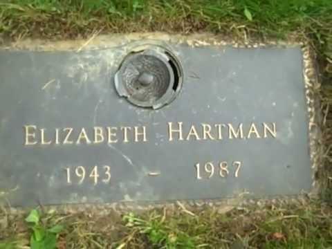 elizabeth hartman quilt book
