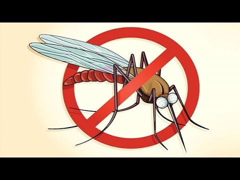What India can learn from Sri Lanka to make country Malaria free