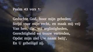 Psalm 43 vers 1 en 4 - Geduchte God, hoor mijn gebeden