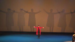 Sara Baras revoluciona Pamplona con su espectáculo 'Sombras'