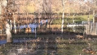 Parque de Campismo Celorico de Basto
