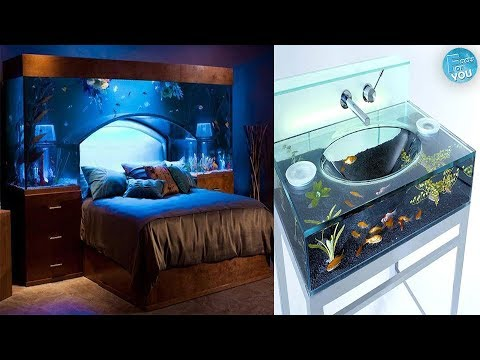 Most Creative Fish Tanks Ideas You Have Ever Seen