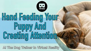 Hand Feeding your Puppy and Creating Attention  Gus the Catahoula in 3D Virtual Reality!