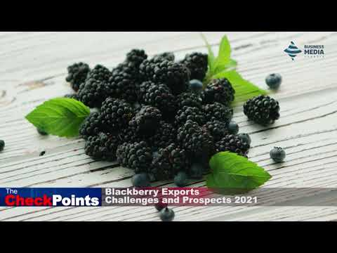 Blackberry Exports: Challenges and Prospects 2021