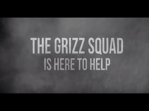 The Grizz Squad: Expert Support