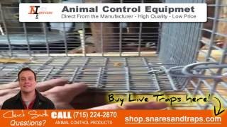 How To Catch Armadillos | How To Trap Armadillos