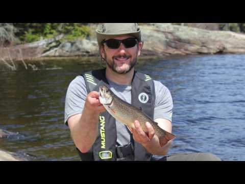 Algonquin Park - Brook Trout Fishing - May 2016