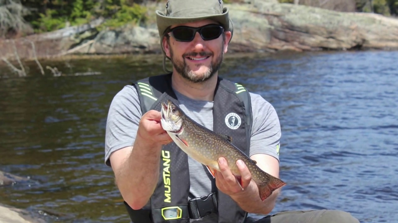 Algonquin park brook trout fishing may 2016 youtube for Youtube trout fishing
