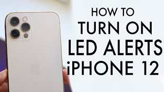 How To Enable Flash Alerts On ANY iPhone 12! screenshot 5